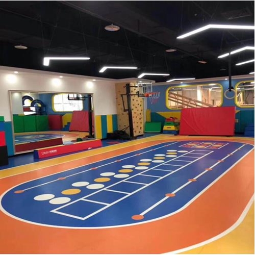Customized design PVC floor for multipurpose court.