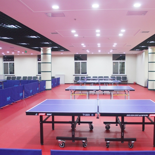 Indoor table tennis court floor